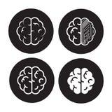 Brain icons set Royalty Free Stock Photos