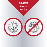 Brain icons. On the white background. Vector Stock Image
