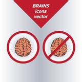 Brain icons. On the white background. Vector Stock Photo