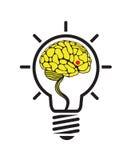 Brain idea Stock Photos