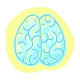 Brain illustration. Brain cartoon; Freehand drawing of a brain Stock Photos