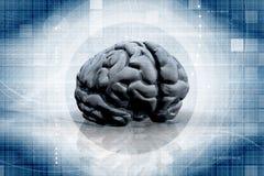 Brain illustration Stock Images