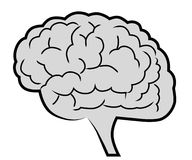 Brain illustration eps. Royalty Free Stock Images