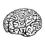Brain. This is an illustration of brain. It has white base shape, you can change it to any color in one click or make it transparent by deleting it Stock Images