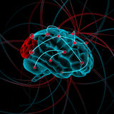 Brain illustration. X-ray brain with some impulse ,with pain location ,on the black background Stock Photos