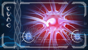 Brain impulses. Neuron system. Human anatomy. transferring pulses and generating information Stock Photography