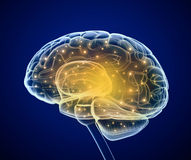 Brain impulses. Thinking prosess Royalty Free Stock Images