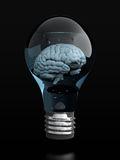 Brain In Light Bulb Royalty Free Stock Photo