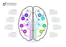 Brain infographic concept. Line style with icons. Vector illustration Royalty Free Stock Images
