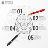 Brain infographic concept with pen. Vector Stock Photography