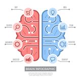 Brain infographic. Conceptual thinking learning symbols vector creative business pictures with place for text stock illustration