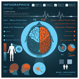 Brain Infographic Infocharts Health And médical Images libres de droits