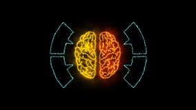 Brain 003 - Infographic 4K Neon. Brain Neon - Human Body stock illustration