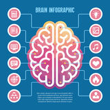 Brain infographic - vector concept illustration with icons. Left and right human brain vector illustration for presentation, bookl Stock Photo