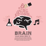 Brain Infographic. Royalty Free Stock Image