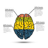 Brain infographics design. Design template Stock Photography