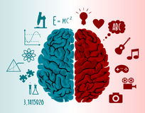 Brain infographics illustration Stock Images