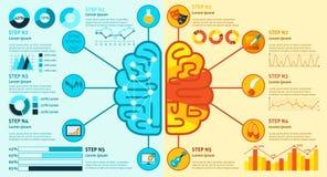 Brain Infographics izquierdo y derecho Imagen de archivo libre de regalías