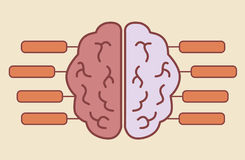 Brain infographics minimal design Royalty Free Stock Photography