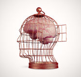 Brain inside a cage Royalty Free Stock Photo