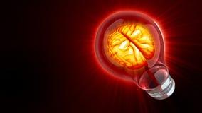 Brain inside light bulb stock footage