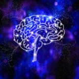 Brain Intelligence illustration stock