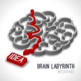 Brain labyrinth infographics Royalty Free Stock Images