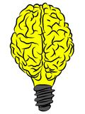 Brain lamp. Conceptual image of a light bulb made of a human brain Royalty Free Stock Image