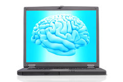 Brain with a laptop Stock Image