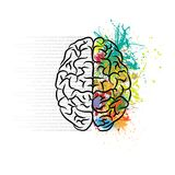 Brain left and right. Human brain silhouette with color ink splashes and gray text royalty free illustration