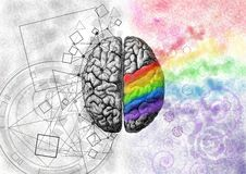 Brain. The Left brain and the right brain. Two halves make a whole stock illustration