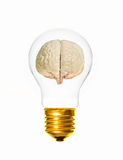Brain light bulb Stock Images