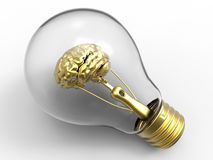 Brain light bulb concept Royalty Free Stock Photo
