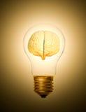 Brain light bulb lit Royalty Free Stock Photography