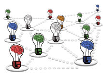 Brain light bulb net work Stock Photos