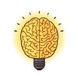 Brain lightbulb illustration. Smart idea concept; Human brain cartoon Stock Photography