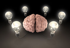 Brain And Lightbulb Imagination Stock Photography