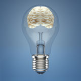 Brain in the lightbulb Royalty Free Stock Images