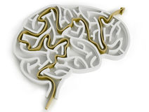 Brain-like maze. Isolated 3d brain-like maze with stylized thinking process Royalty Free Stock Photography
