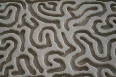 Brain like surface design Stock Photos