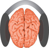Brain listening Stock Images