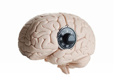 Brain lock. Human brain model with a dial lock Stock Image