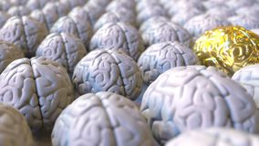Brain made of gold among the ordinary ones. Genius, mastermind, talent or education conceptual animation