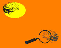 Brain and magnifying glass. Abstract orange background with brain shapes and magnifying glass Stock Photography