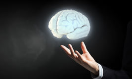 Brain in male hand Stock Image