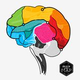 Brain Map. An illustration of a human brain made up from a map. Vector illustration Stock Image