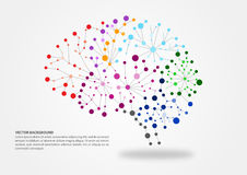 Brain mapping concept. Colorful brain mapping concept with dots, circles and lines