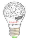 Brain of marketing strategy Royalty Free Stock Images