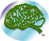 Brain maze. Vector illustration for a brain shape maze, metaphors Royalty Free Stock Photos