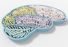 Brain maze. Colorful a brain shape maze, metaphors. 3D render photo vector illustration
